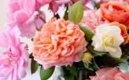 I fiori recisi che durano più a lungo