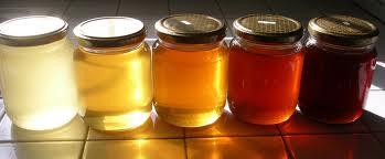 I tipi di miele
