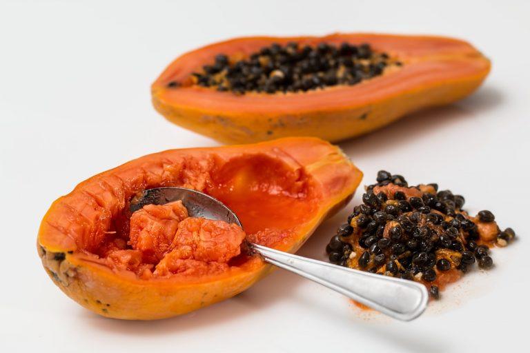 papaya fermentata 768x512