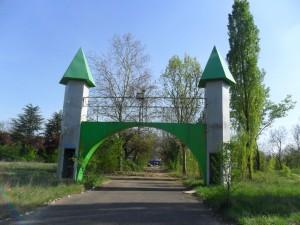 torri greenland