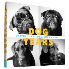 Come i cani invecchiano un progetto fotografico affascinante e toccante
