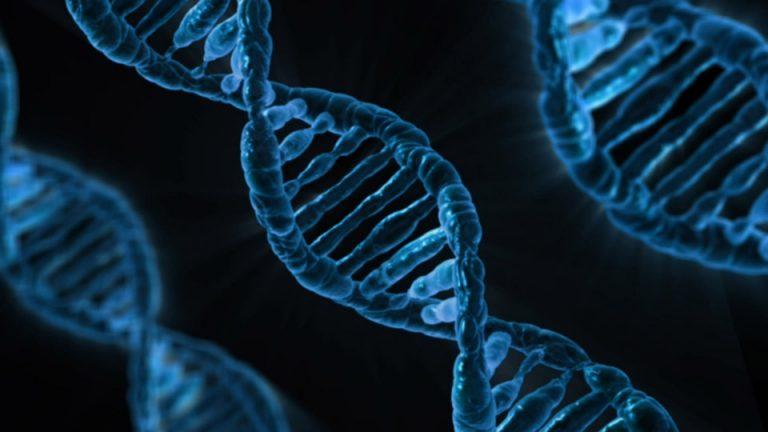 esame genetico