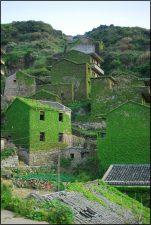 houto wan 4