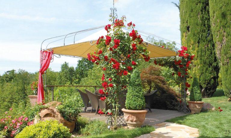 Come creare un giardino feng shui sul terrazzo