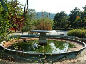 Fontana abbandonata