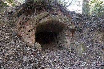 Quello che resta della città sono sparsi frammenti sommersi dalla vegetazione. Ricostruire dove sorgeva il centro è difficile.