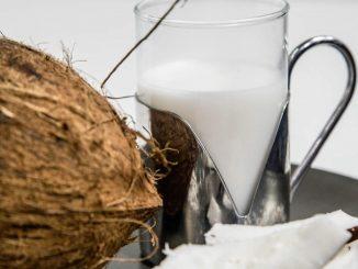 Dove si compra latte di cocco alimentare