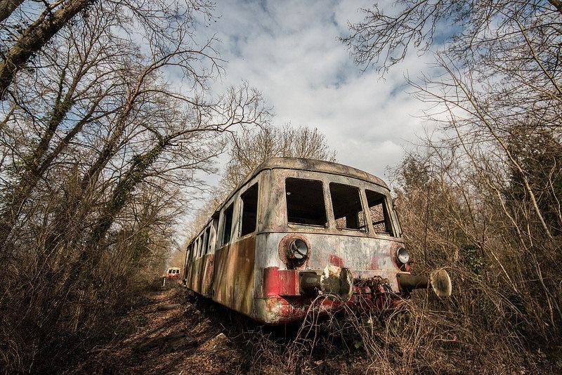 Foresta-Treni-2