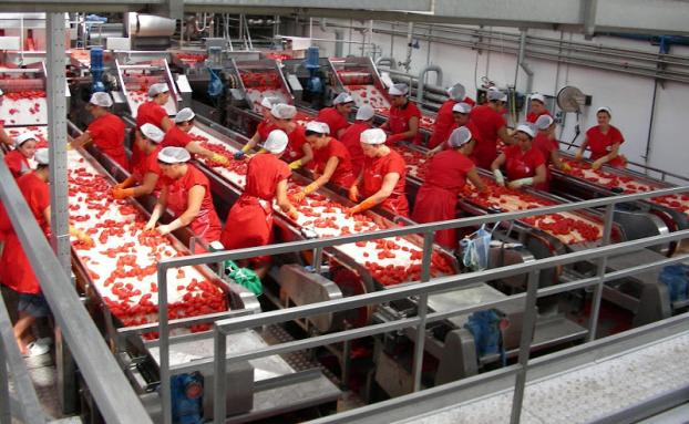 Puglia: 1000 posti di lavoro