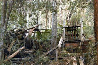 vecchi attrezzi nel bosco Cassilis