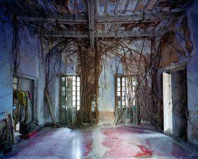 Come in molti dei luoghi abbandonati che incontriamo, la natura fa il suo dovere nel ripopolare le stanze.