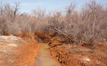 Il luogo in cui si trovava la miniera oggi è arido e desolato.