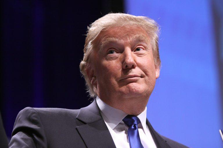 USA, mostra provocazione Donald Trump