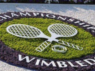 wimbledon 2016 finale