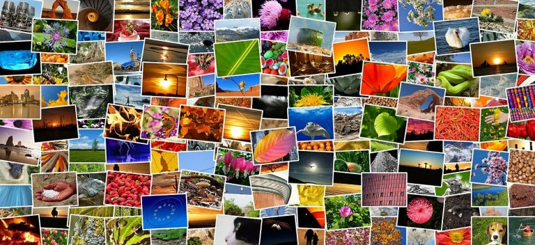 Programmi gratis online per collage foto