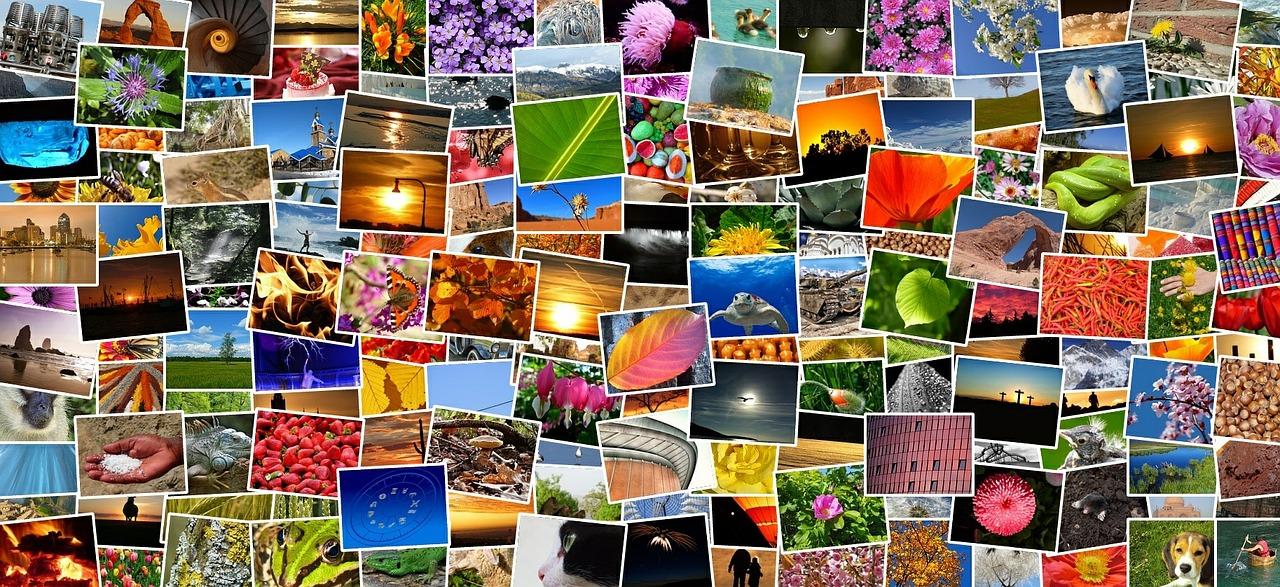 Programmi gratis online per collage foto for Progettista di ponti online gratuito