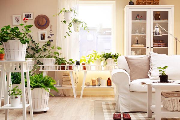 giardino da appartamento si può