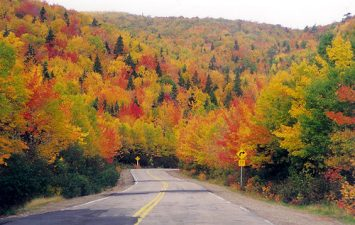 L'autunno canadese in generale è un'esplosione di colori, ma a Cape Breton sono qualcosa di incredibile.