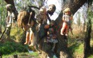 Bambole appese ad un albero