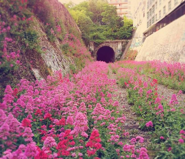 luoghi-natura-2