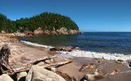Le spiagge del Capo sono stupende, e gli alberi arrivano fino all'orlo del bagnasciuga.