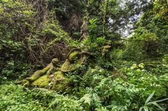 Giardino abbandonato