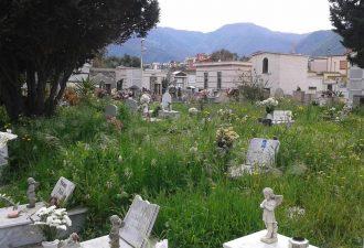 Il cimitero trascurato e abbandonato