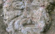 Il volto del Diavolo dei Boschi. Foto di Armando Bellelli.