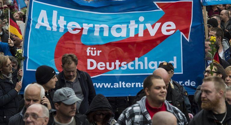 elezioni germania afd