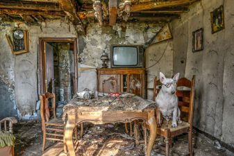 il-mio-cane-ed-io-me-and-my-dog-explore-abandoned-places-across-europe-12__880