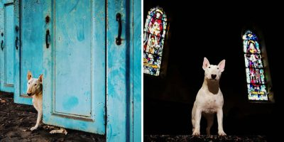 il-mio-cane-ed-io-me-and-my-dog-explore-abandoned-places-across-europe-16__880