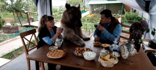 Yuriy e Svetlana Panteleenko a tavola con l'Orso Stepan