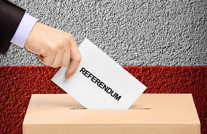 Scrutatori per il prossimo Referendum: ecco i requisiti