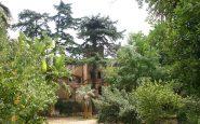 Villa Alliata in mezzo ad una folta vegetazione