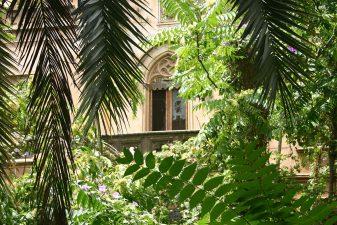 Villa Alliata, villa in rovina
