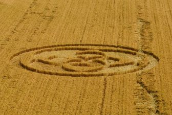 """I """"cerchi nel grano in Inghilterra"""