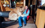 Coccole tra Yuriy e Stepan