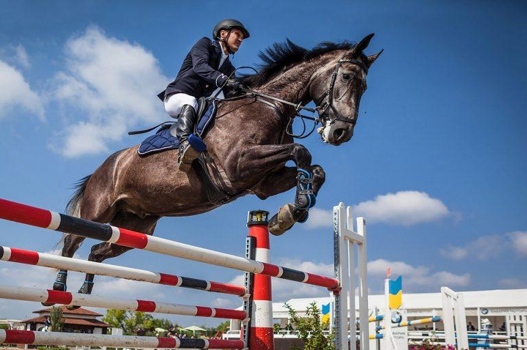 Salto cavallo