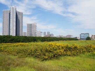 Come trovare un terreno dove costruire la vostra nuova casa