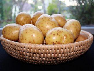 coltivare-patate-nei-sacchi