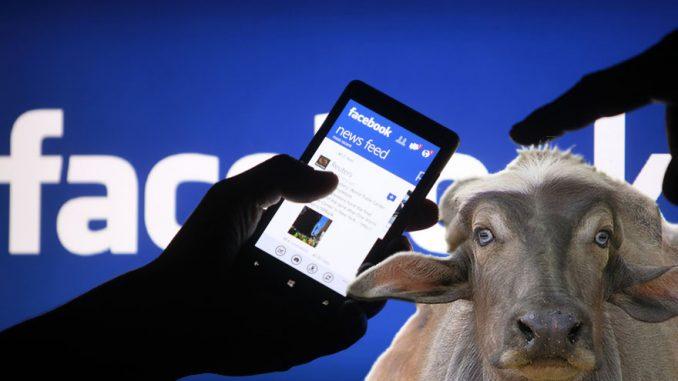 Basta con le bufale: Facebook dichiara guerra alle fake news