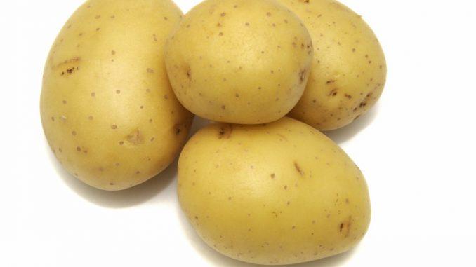 quando raccogliere le patate