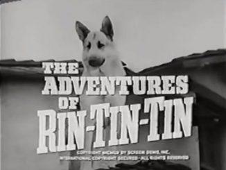 Le avventure di Rin Tin-Tin: la serie televisiva