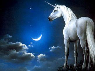 Unicorno: significato e origine del mito