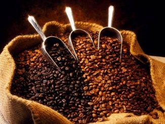 Quale è la miscela di caffè migliore