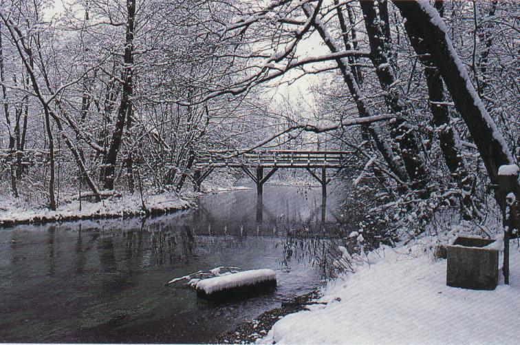Inverno: le frasi più belle su questa stagione