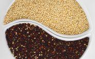 Quinoa: cos'è e che gusto ha