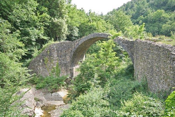 Il Ponte della Pia sul torrente Rosia tra la vegetazione