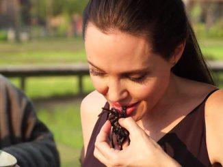 Angelina Jolie mangia insetti con i suoi figli: il video
