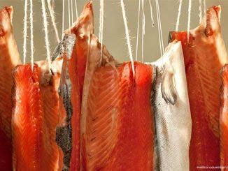 Come si fa il salmone affumicato
